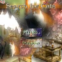 Игра Искать кота
