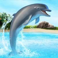 скачать игру про дельфинов - фото 10