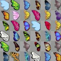 Игра Бабочки онлайн