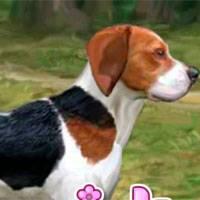 Игра Гончий пес онлайн