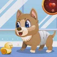 Игра Уход за собаками онлайн