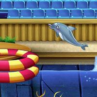Игра Выступает дельфин 3 онлайн